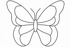 Dessin Facile Papillon : dessin de papillon anthalia ~ Melissatoandfro.com Idées de Décoration