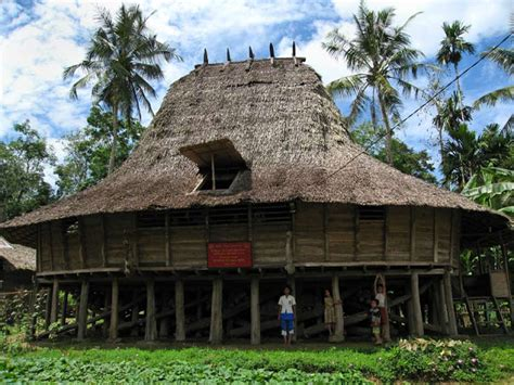traditional house nias  earthquake resistant  fact  indonesia