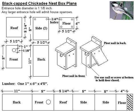 black capped chickadee bird house plans diy wild birds pinterest nests good ideas