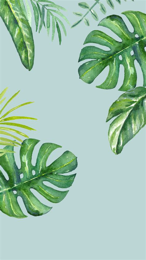 dlolleys  iphone  jungle leaves wallpapers