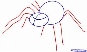 How to Draw an Easy Spider, Step by Step, Bugs, Animals ...
