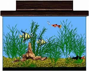 Aquarium Graphic Animated Gif - Graphics aquarium 617014