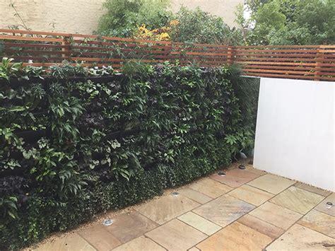 wall plants for shade living wall chiswick london garden designer elemental designs garden design garden