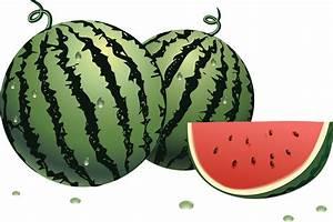 Watermelon 8 cliparts - Clipartix