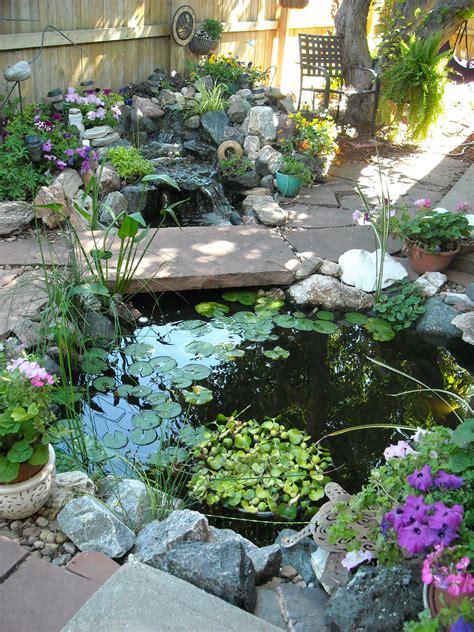 small garden pond ideas homsgarden