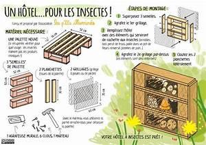 Fabriquer Un Hotel A Insecte : dans les yvelines page 5 ~ Melissatoandfro.com Idées de Décoration