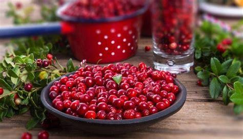 Sārtā rudens vēstnese brūklene - gardas idejas desertiem ...