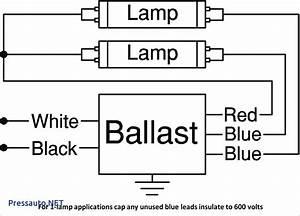 3 Bulb Ballast Wiring Diagram