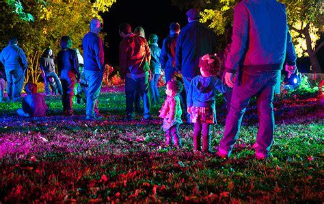enchanted forest  light opens  descanso gardens la jaja