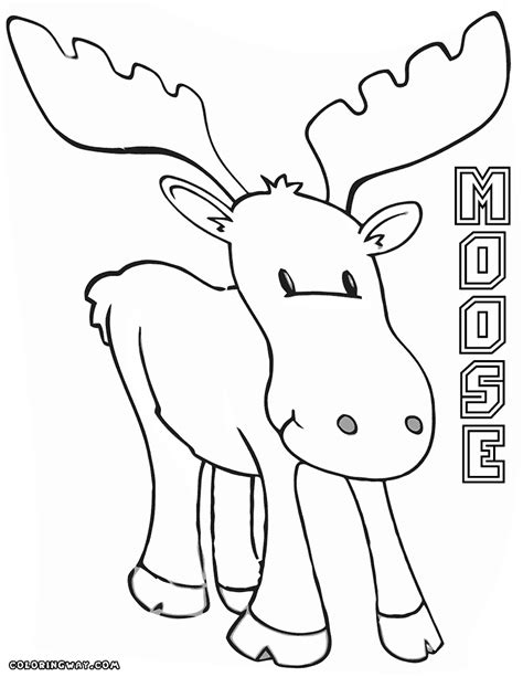 moose coloring pages canadian moose coloring page coloring pages