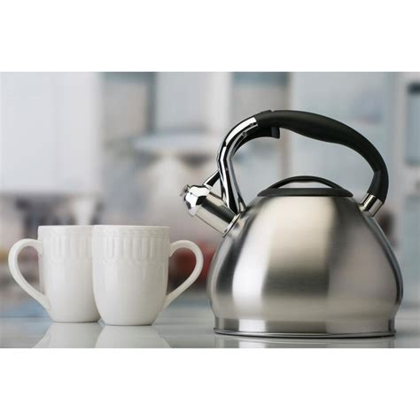 Kitchen Living Tea Kettle by Kitchen Details 10 Cup Stainless Steel Tea Kettle 3549