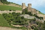 Ehrenfels Castle (Hesse) | Military Wiki | FANDOM powered ...