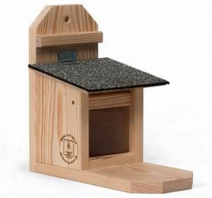 Eichhörnchen Aus Holz : futterh uschen f r eichh rnchen aus holz ~ Orissabook.com Haus und Dekorationen