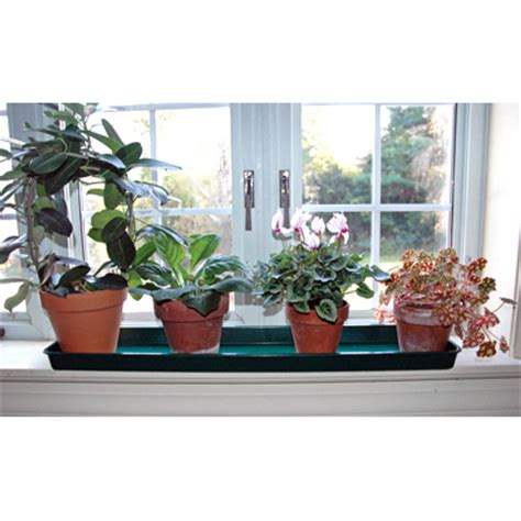 Window Sill Plant Pots by Window Sill Protector Plant Tray Kinsman Company