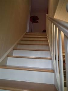 Peinture Pour Escalier : la mont e d 39 escaliers est finie ouf le blog orang ~ Zukunftsfamilie.com Idées de Décoration