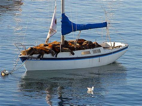 Big Boat Fails by Association Forum Epic Fail Boating Pictures