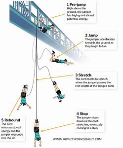 How Does Bungee Jumping Work    How They Test  Video