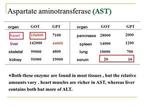 sgpt levels normal range alt sgpt activity xiaoli ppt