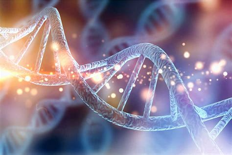 genetics national institute  drug abuse nida
