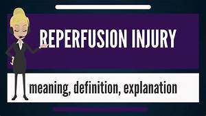 What Is Reperfusion Injury  What Does Reperfusion Mean