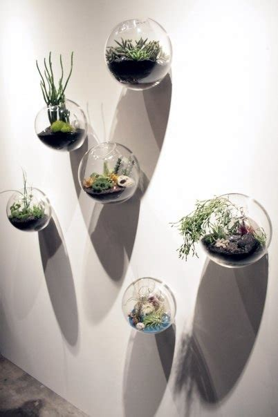 pcsset wall hanging glass fishbowlwall bubble terrarium