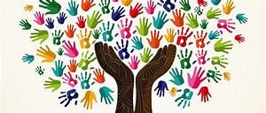 college diversity essay sample common app essay help college diversity essay sample