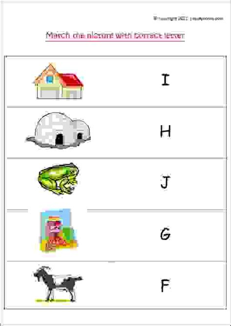 match the picture with correct letter f to j estudynotes