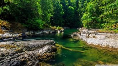 Forest Stream Mountain 4k Desktop Wallpapers Ultra