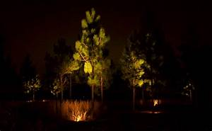 Edited landscape lighting flyer image ? moore