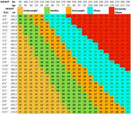 BMI Chart Women Calculator