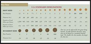 Shot Information Data Tables Ballisticproducts Com