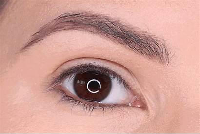 Eyeshadow Palette Chanel Neapolis Looks