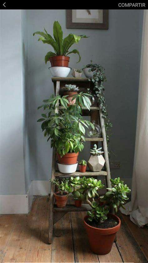 casa jardin interior pequeno escalera plant decor