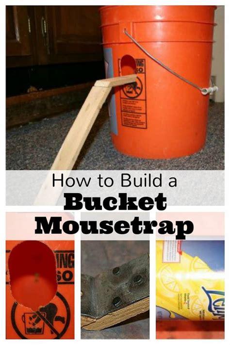 build  bucket mousetrap  budget diet