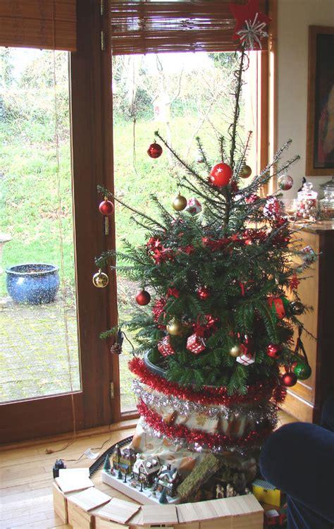 planter un sapin en pot 28 images cultiver un arbre en pot gamm vert sapin planter et