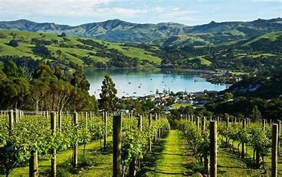 Zealand Reese Vineyard Oprah Wine Island South