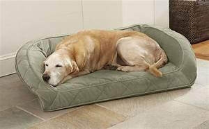 perfect products for low maintenance pup parents barkpost With orvis no chew dog bed