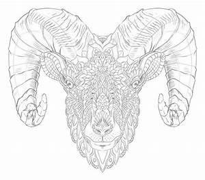 Ram Head (Tattoo Design) on Behance