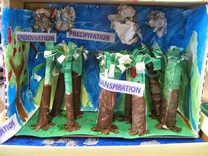 Water Cycle  Dioramas And Rainforests On Pinterest