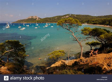 parc national de port cros var iles d hyeres parc national de port cros national park stock photo royalty free