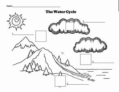 Cycle Water Diagram Worksheet Coloring Blank Label