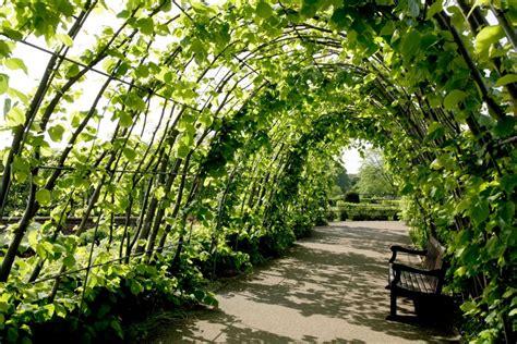 Sonnenschutz Für Den Garten by Schatten F 252 R Den Garten Ostsee G 228 Rten