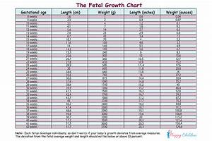 Fetal Growth Chart The Children 39 S Happiness Guide