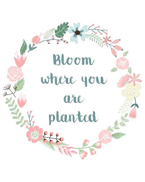The free cut files include one (1).zip file with: Free Printable - Bloom where you are planted + Link Love ...