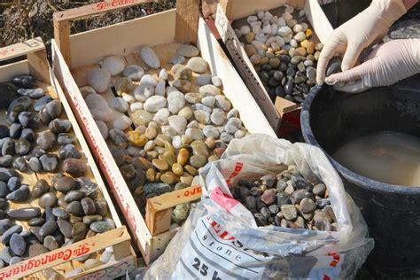 Bunte Trittsteine Fuer Den Garten Herstellen Mit Mosaik Steinchen Und Beton by Mosaikplatten Aus Beton Selber Machen Outdoor Living