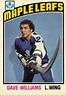 Toronto Maple Leafs Single Season Kings of the Sin Bin ...