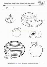 Fruit Worksheets Fruits Kindergarten Printable Coloring Worksheet Viatico sketch template