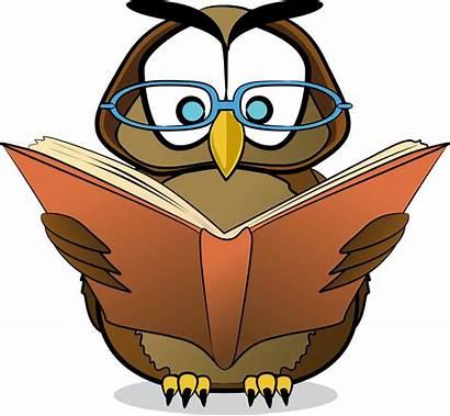 Owl Writing Clip Cartoon Clipart Owls Reading