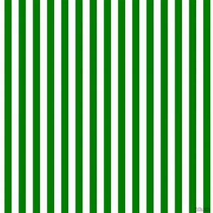 Green Stripe Square Party Box - Party decor and rentals