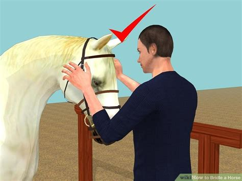 horse bridle wikihow